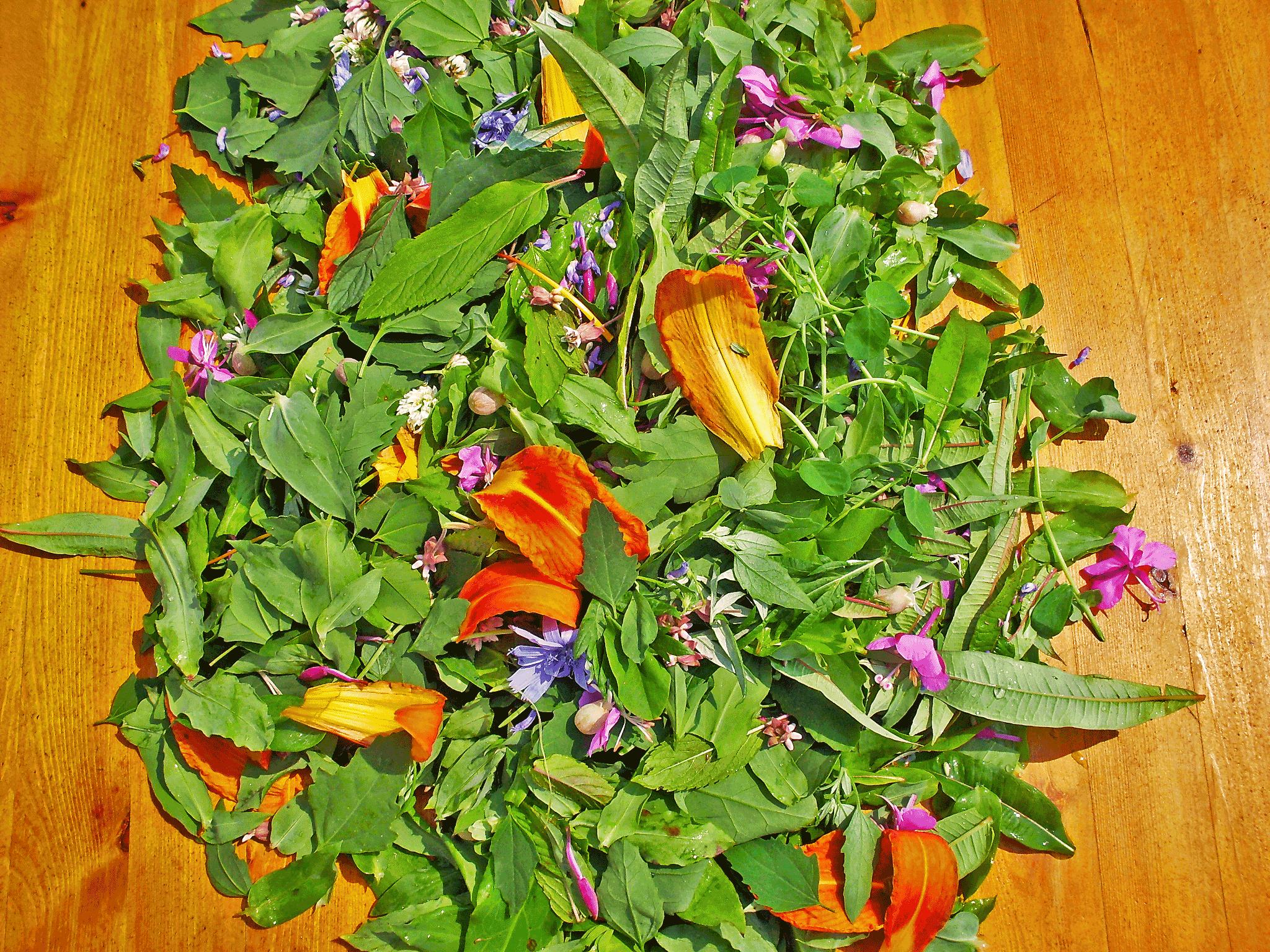 funky-salad-big.png