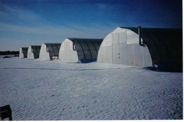 27'wide Greenhouses.jpg