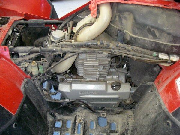 HONDA ATV 2007- 003.JPG