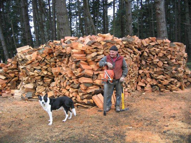 Wayne firewood.jpg