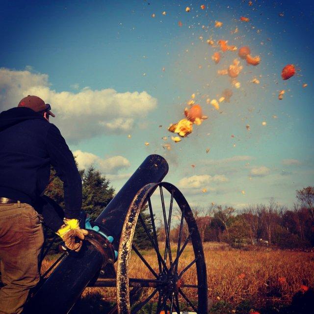 pumpkin cannon.JPG
