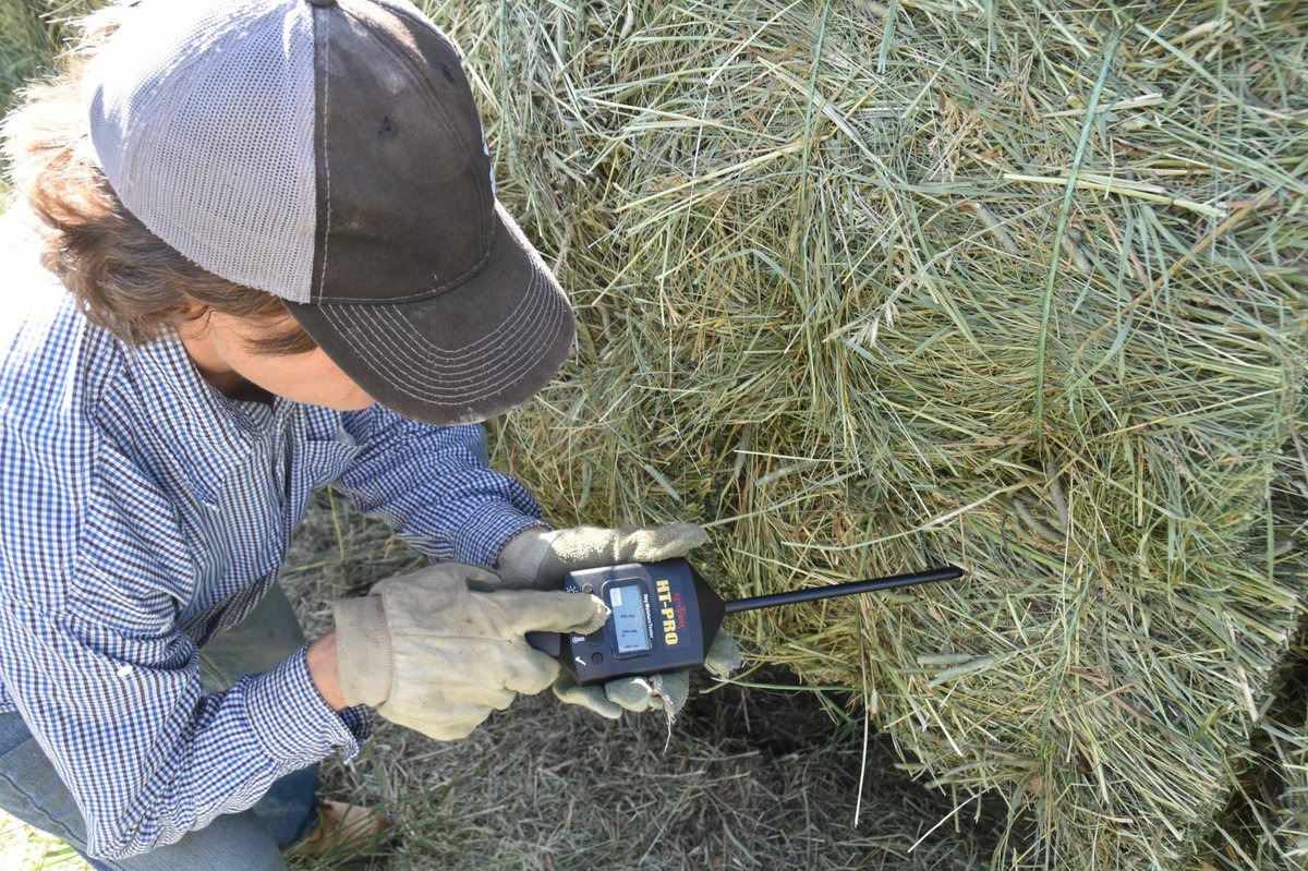 Hay moisture testers: A new summer tradition - Small Farm
