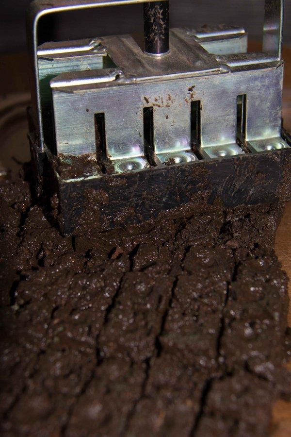 soil block-8878.jpg