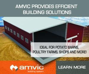 AMVIC - big box