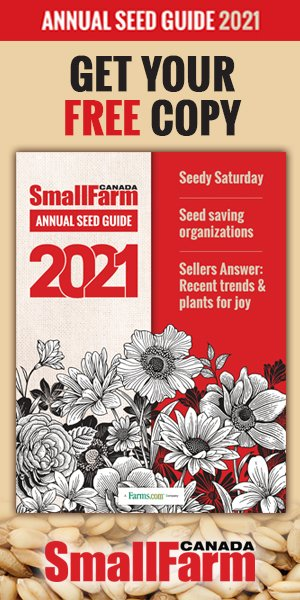 2020 Seed Guide cover